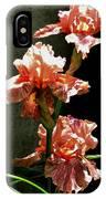 Peach Trio IPhone Case