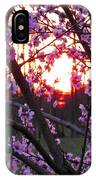 Peachy Sunset 2 IPhone Case