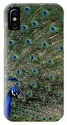Peacock 8 IPhone Case