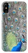 Peacock Bow IPhone Case