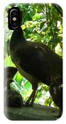 Peacock Family At Capernaum IPhone Case