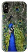Peacock In Open Feathers, Victoria, Bc IPhone Case