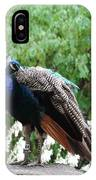 Peacock On A Rock 2 IPhone Case