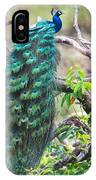 Peacock Perching On A Branch, Kanha IPhone Case
