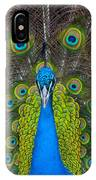 Peacock Portrait IPhone Case