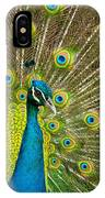 Peacock Pride IPhone Case