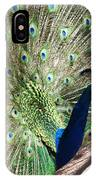 Peacock Show IPhone Case