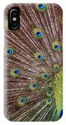Peacock Squared IPhone Case