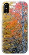 Peak And Past Foliage IPhone Case