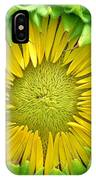 Peaking Out #1 IPhone Case