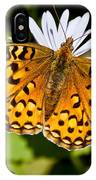 Pearl Border Fritillary Butterfly On An Aster Bloom IPhone Case