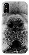 Pekingese Puppy IPhone Case