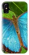 Peleides Blue Morpho IPhone Case