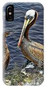 Pelican And American Black Duck IPhone Case