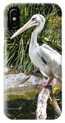 Pelican At Rest IPhone Case