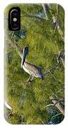 Pelican In The Trees IPhone Case