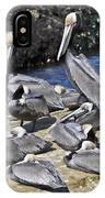 Pelican Rock IPhone Case