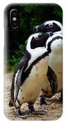 Penguins On Beach At Boulders Beach Cape Town IPhone Case
