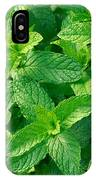 Peppermint IPhone Case