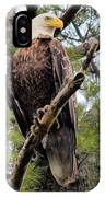 Perched After The Hunt IPhone Case
