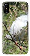 Perched Egret IPhone Case
