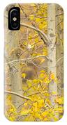 Perched In The Colors Of Autumn IPhone Case