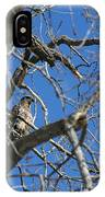 Perched IPhone Case