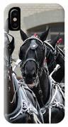 Percheron Horse Team 2008 IPhone Case