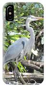 Perching Blue Heron IPhone Case