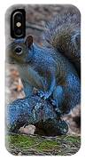 Perching Squirrel IPhone Case