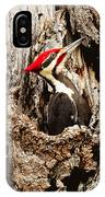 Perfect Pileated Pose IPhone Case