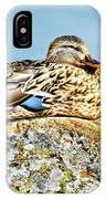Perfect Resting Rock IPhone Case