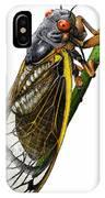 Periodical Cicada IPhone Case