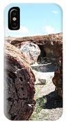 Petrified Timber IPhone Case