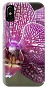 Phalaenopsis Helen Alice Mary 2220 IPhone Case