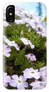 Phlox IPhone Case