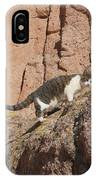 Pierre The Mountain Climber IPhone Case
