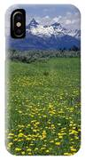 1a9210-pilot Peak And Wildflowers IPhone Case