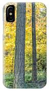 Pine Forest In The Autumn IPhone Case