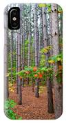 Pine Forest With Autumn Color IPhone Case