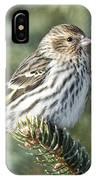 Pine Siskin IPhone Case