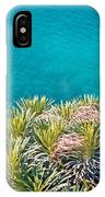 Pine Tree Branches With Turquoise Sea Background IPhone Case