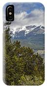 Pine Trees In The Rocky Mountain National Park IPhone Case