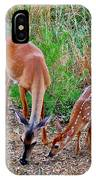 Piney Mountain Doe And Fawn IPhone Case