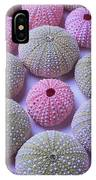 Pink And Green Urchins IPhone Case