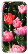 Pink And Red Ruffly Tulips Square IPhone Case