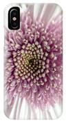 Pink And White Chrysanthemum IPhone Case