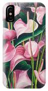 Pink Anthuriums IPhone Case