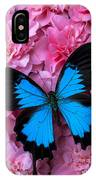 Pink Camilla And Blue Butterfly IPhone Case