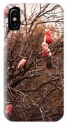 Pink Galahs IPhone Case
